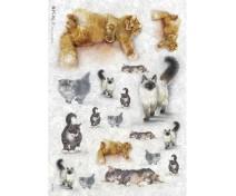 Decoupage Paper - 32x45 cm, ANI_0037