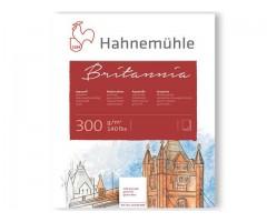 Akvarelliplokk BRITANNIA 17x24cm 300g/m2 12 lehte, külmpress, Hahnemühle