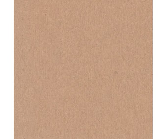 Kartong pruun A4 320g/m² - 25 lehte