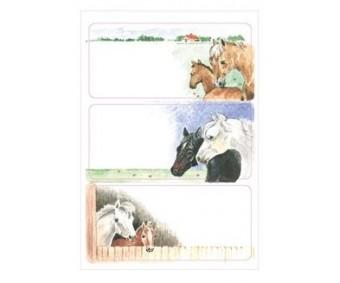 Vihikuetiketid Herma Vario - hobused
