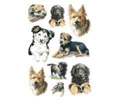 Kleepsud Decor - koerad