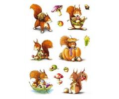 Kleepsud Decor - oravad