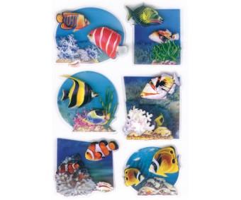 Kleepsud Magic - ruumilised kalad
