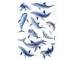 Kleepsud Magic - delfiinid (kivikestega)