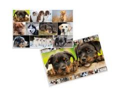Lauamatt Herma 35x55cm - koerad