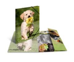 Plastikust mapp Herma A3, läikiv - koer