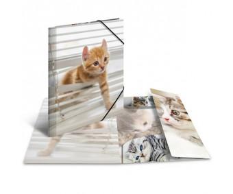 Plastikust mapp Herma A3, läikiv - kass