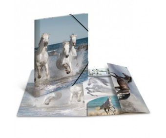 Plastikust mapp Herma A3, läikiv - hobune
