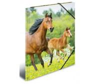 Plastikust mapp Herma A4 - hobused