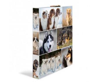 Rõngaskaaned Herma A4, 35mm, pildiga - koerad