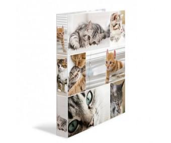 Rõngaskaaned Herma A4, 35mm, pildiga - kassid