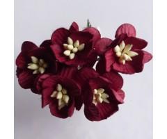 Paberlilled mooruspuu paberist (mulberry) - kirsiõied 5 tk, burgundy