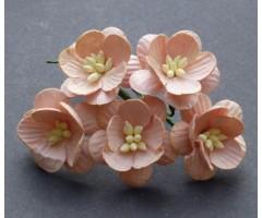 Paberlilled mooruspuu paberist (mulberry) - kirsiõied 5 tk - peach