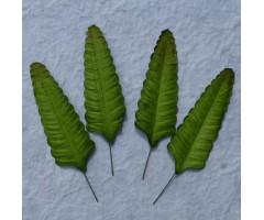 Lehed mooruspuu paberist (mulberry) - 70mm 10 tk, roheline