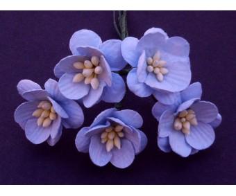 Paberlilled mooruspuu paberist (mulberry) - kirsiõied 5 tk, helesinine