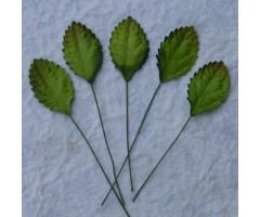 Lehed mooruspuu paberist (mulberry) - 30mm 10 tk, roheline