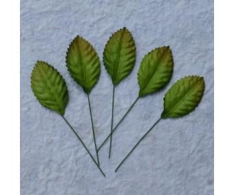 Lehed mooruspuu paberist (mulberry) - 35mm 10 tk, roheline