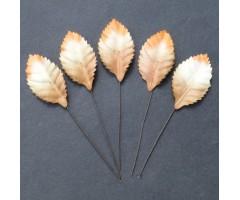 Lehed mooruspuu paberist (mulberry) - 35mm 10 tk, valge/ pruun