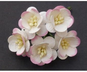 Paberlilled mooruspuu paberist (mulberry) - kirsiõied 5 tk, roosa/valge