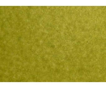 Siidipaber 50x75 cm, 4 lehte - Vert Mousse