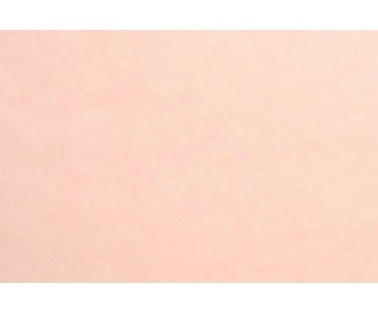 Siidipaber 50x75 cm, 4 lehte - Rose Pale